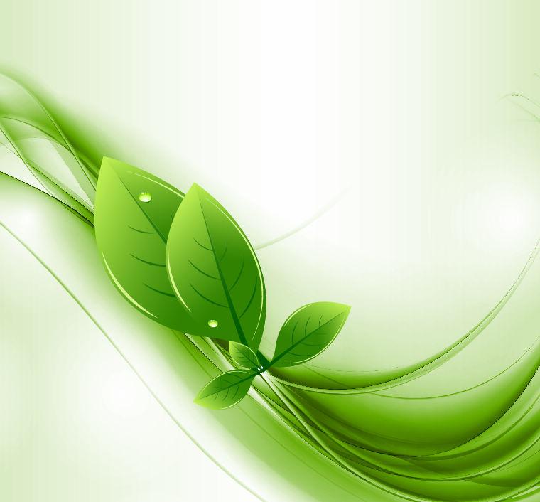 Eco leaves business powerpoint ppt template toneelgroepblik Gallery